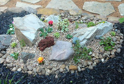 Court Yard -Rock Garden