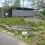 Most of the trees, shrubs, ground cover, and vegetation has been removed and we are left with this mess.