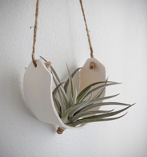 Air plant cradle
